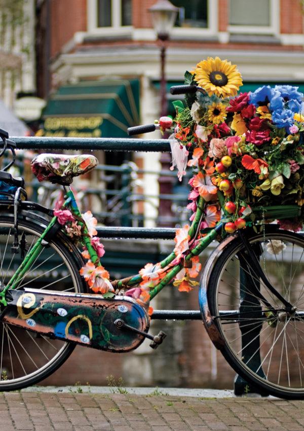 Amsterdam in bicicletta