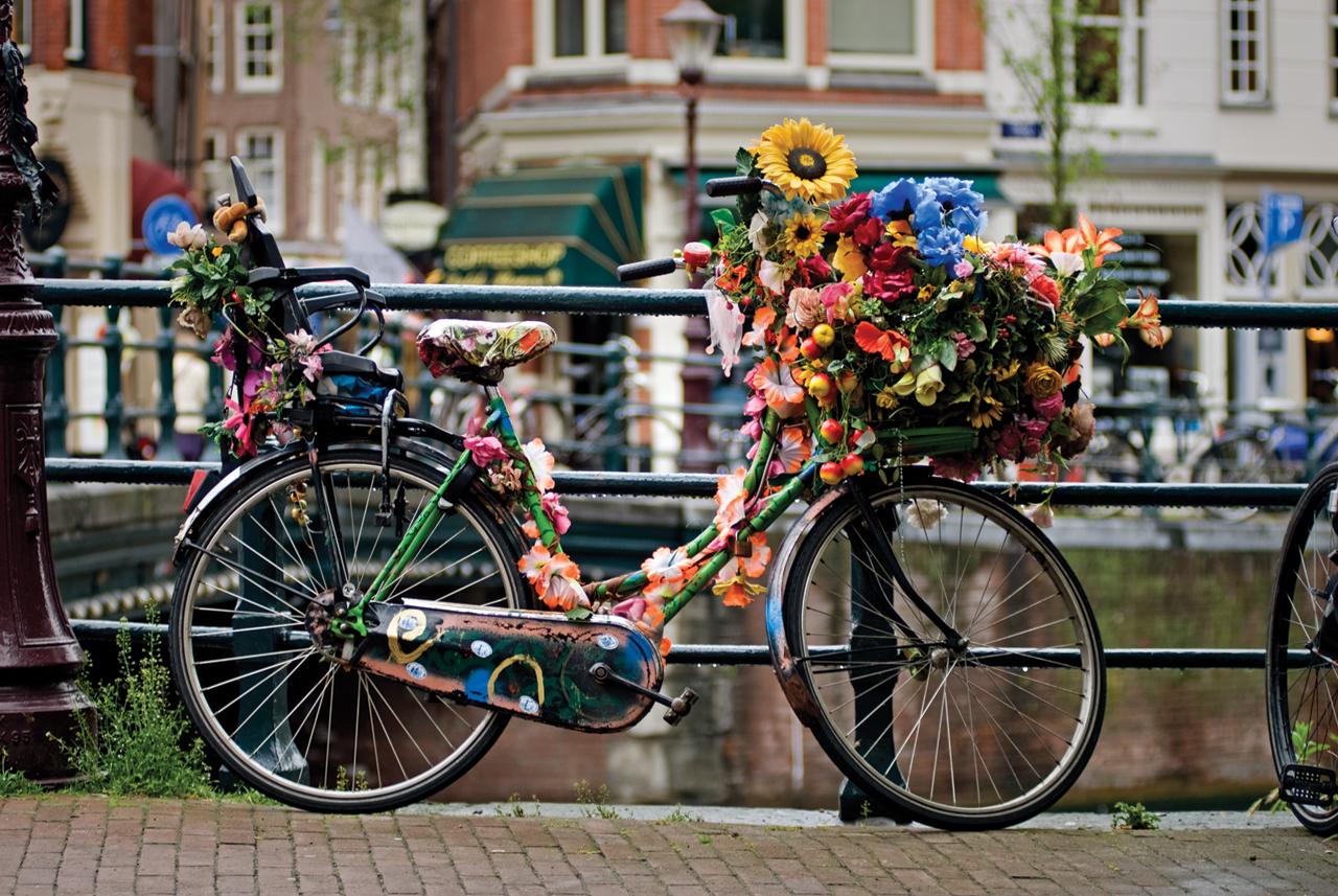 Amsterdam in bicicletta trippando for Affitto bici amsterdam