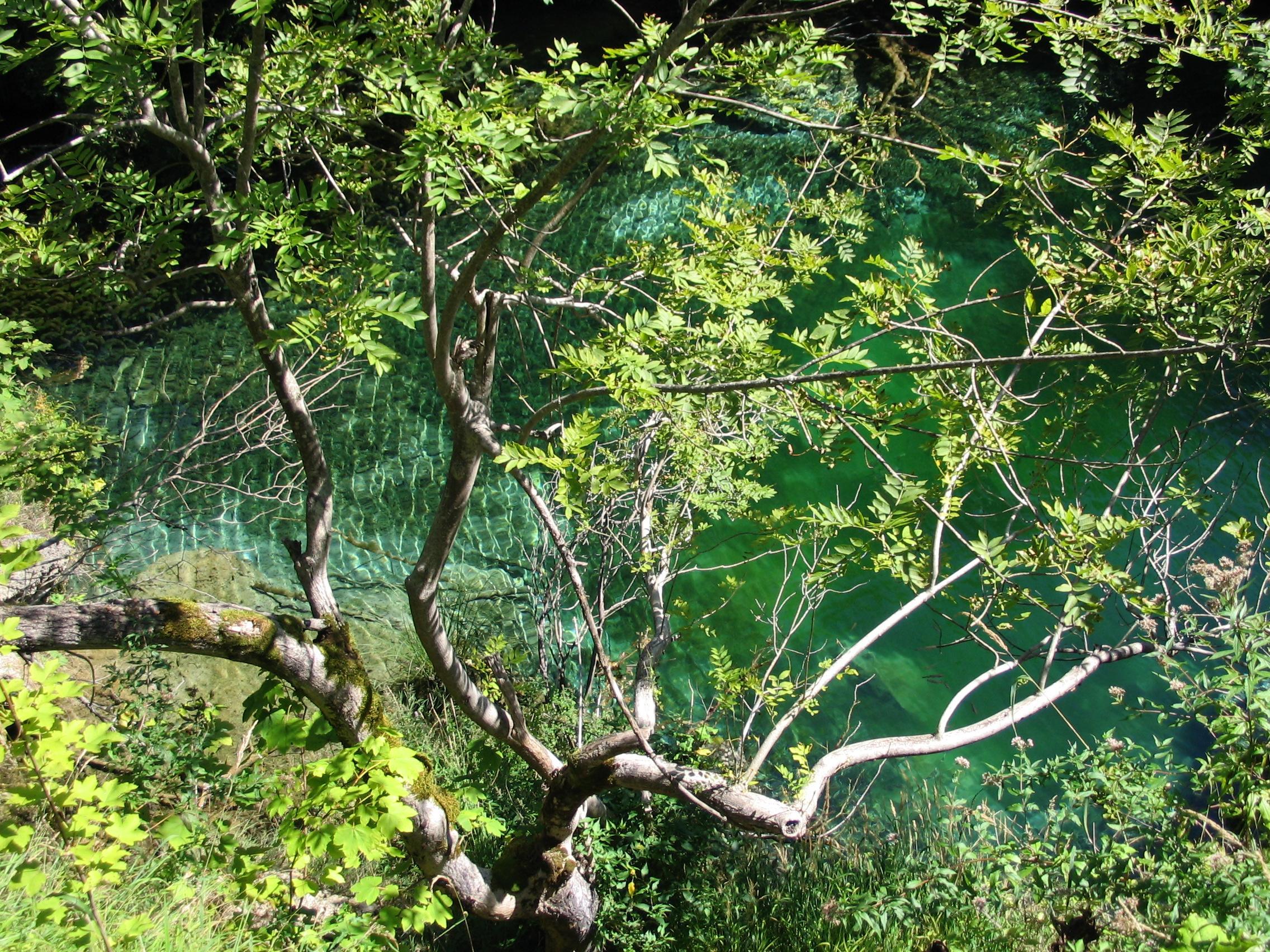 movimento nell'acqua laghi di plitvice