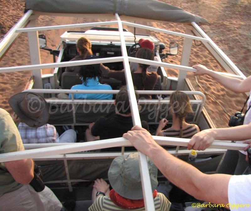 safari vacanza