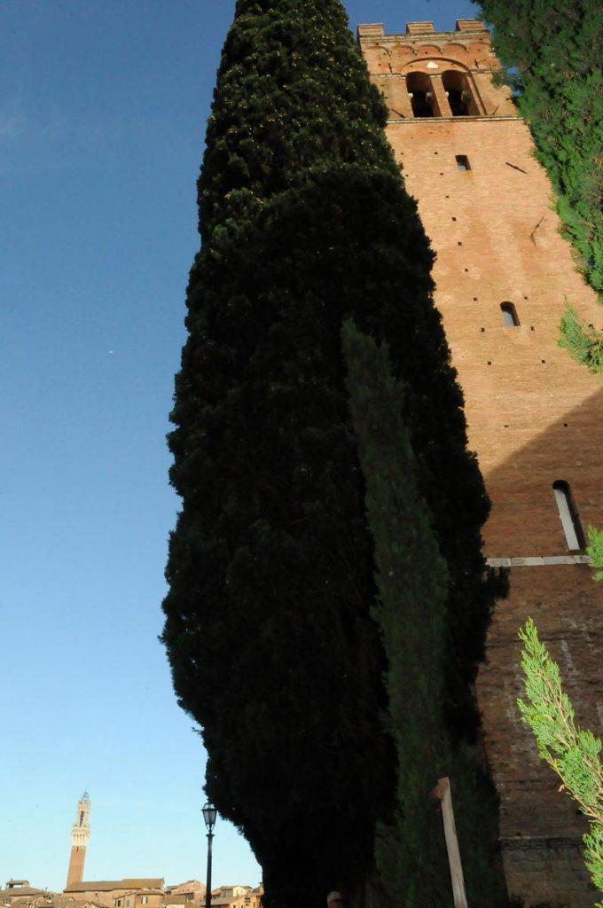 visione laterale di piazza del campo a siena