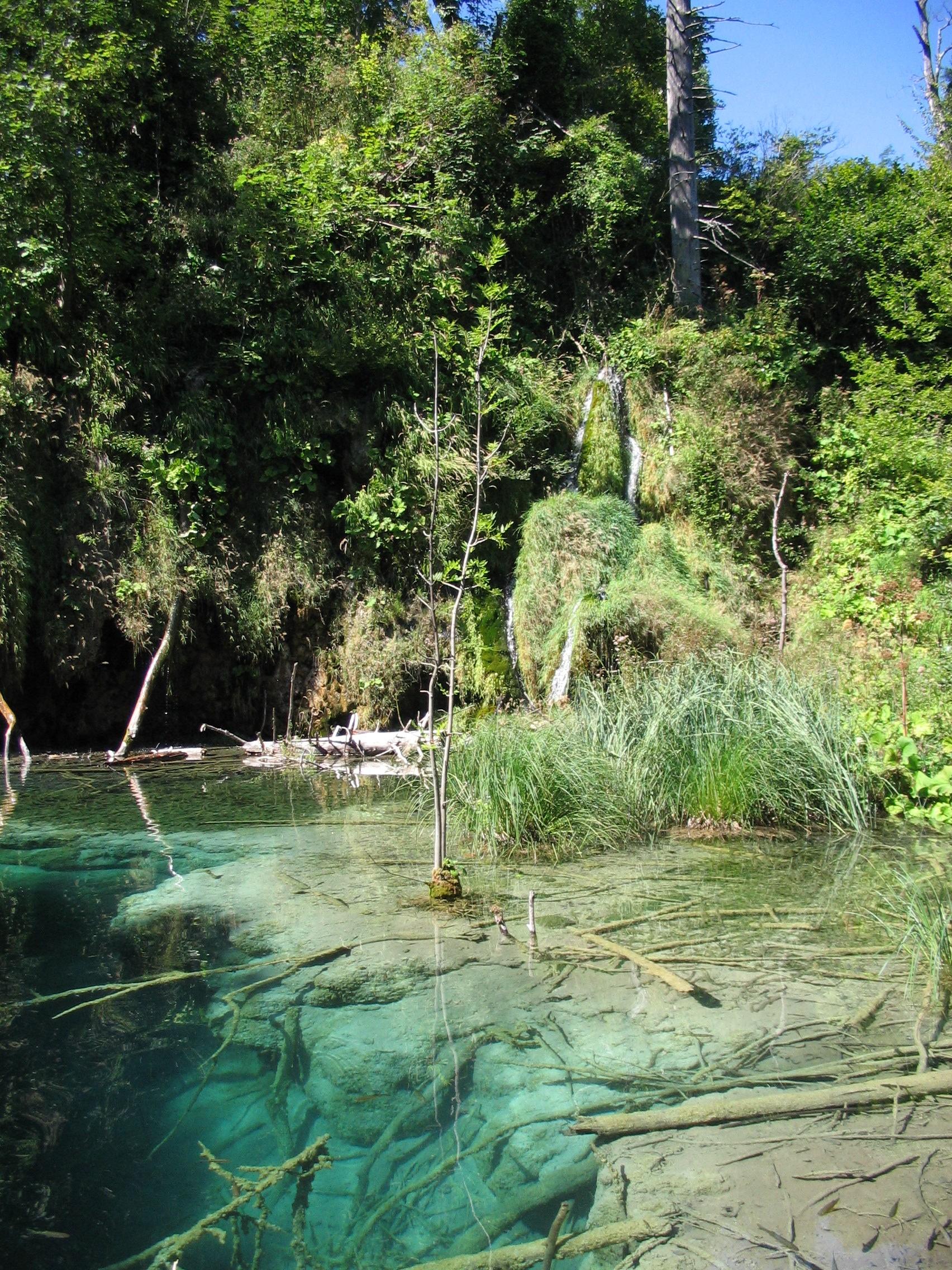 radici sotterranee laghi di plitvice