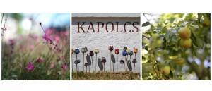 Kapolcs, il cuore del festival