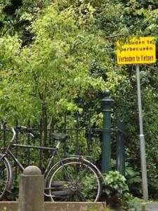 al parco con la bici... ma senza fare i barbeque!