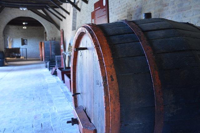 Fiastra - Museo del Vino