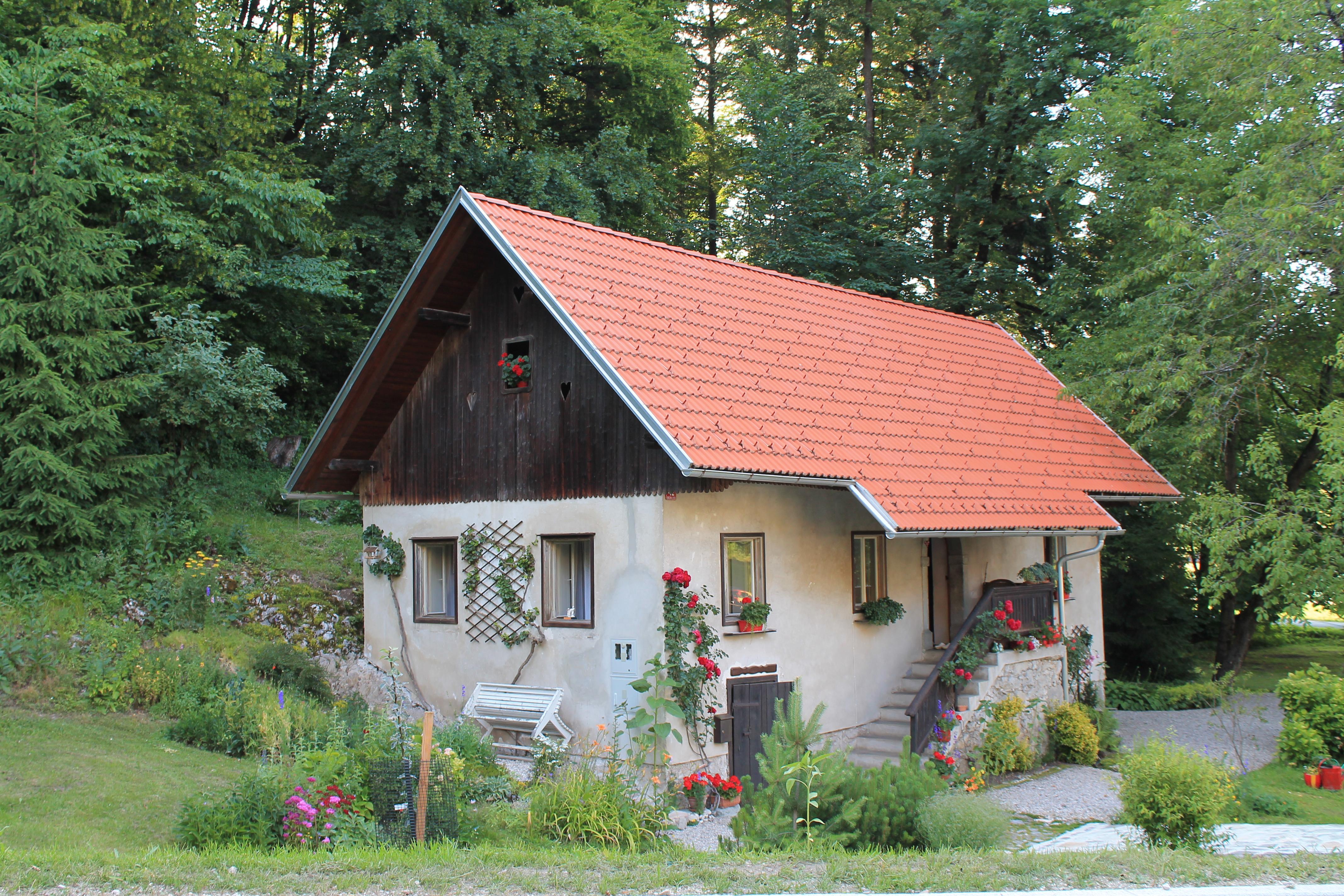 Case Piccole Da Sogno : Casetta in legno sull albero una casa da sogni immersa nella