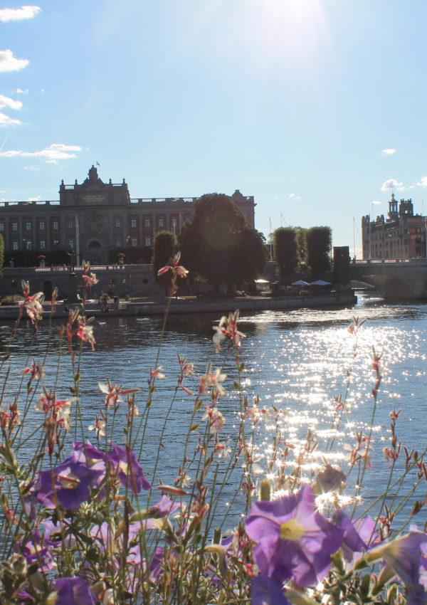 Stoccolma o Copenaghen? Riflessioni per scegliere la capitale nordica che fa per te