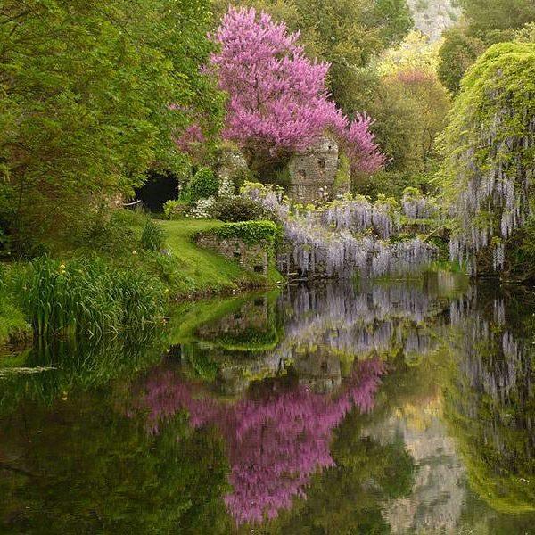 Itinerari Verdi – Il Giardino di Ninfa