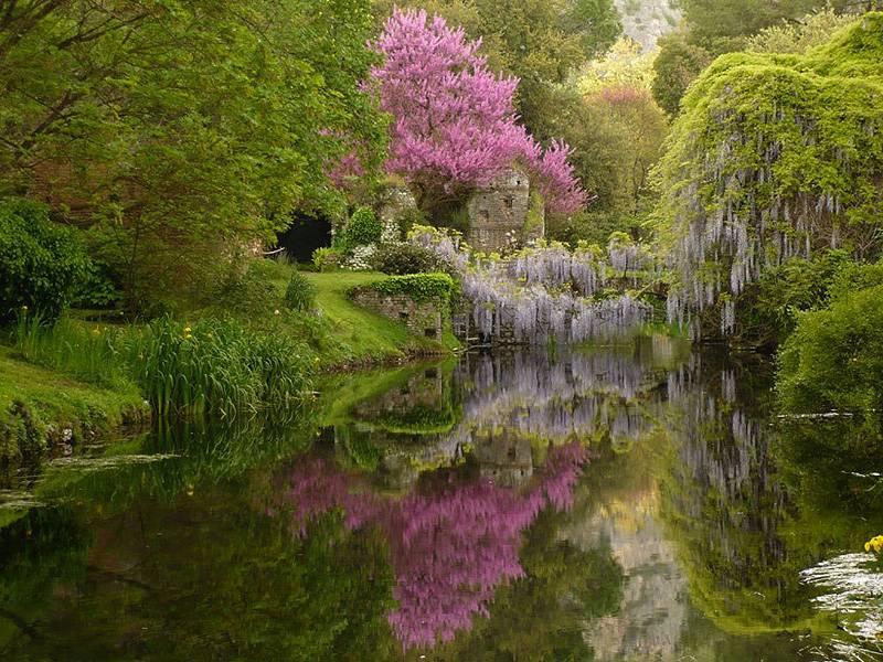 Il giardino di ninfa - Il giardino di ausonia ...