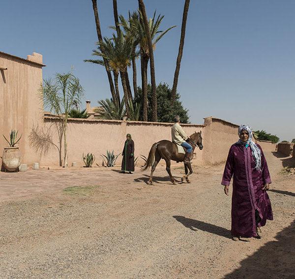 5 cose da Fare, Vedere e Mangiare a Marrakech