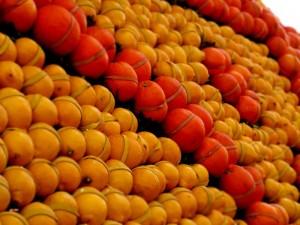 Arance e Limoni sui carri alla festa dei limoni Menton