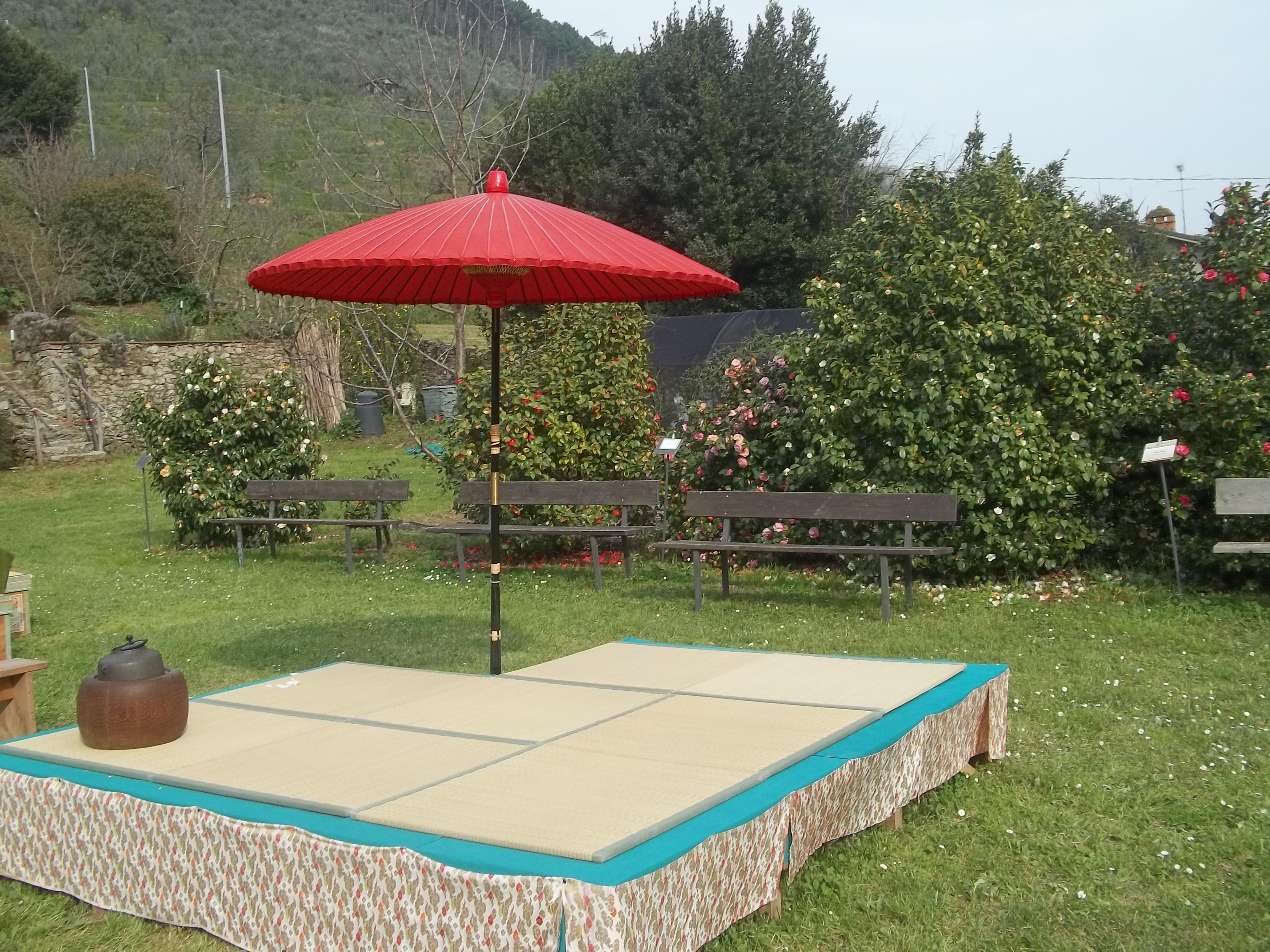 Il giappone a casa nostra la cerimonia del t trippando - Piccolo giardino giapponese ...