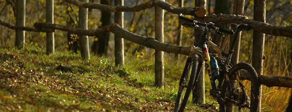 Lago Maggiore Bike Hotel