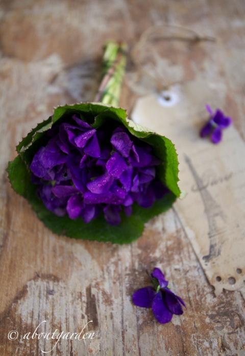 violetta-bouquet