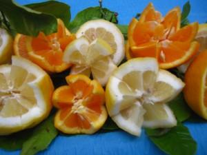 Arance IGP e Limoni femminelli del Gargano