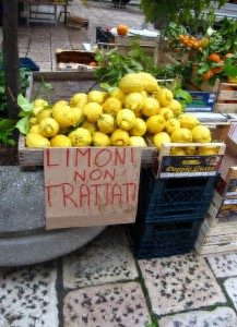Limoni in vendita a Rodi Garganico