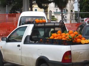 Arance in vendita a Rodi Garganico