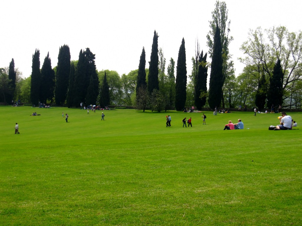 Pic-nic nel parco