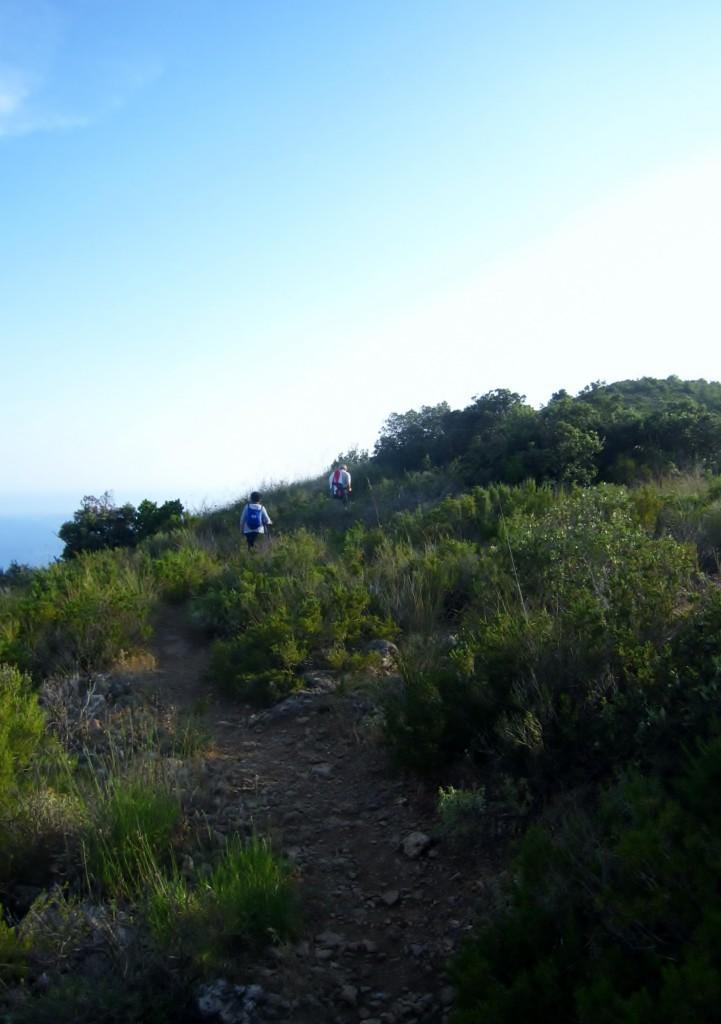 Il sentiero che conduce ai resti della Torre di Capo d'Omo