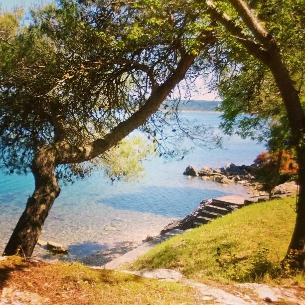 I pini sul mare - Ph. credits: @girovagate su Instagram