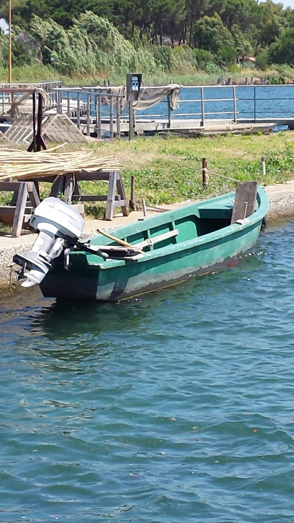 Il barchino a fondo piatto per la pesca in laguna