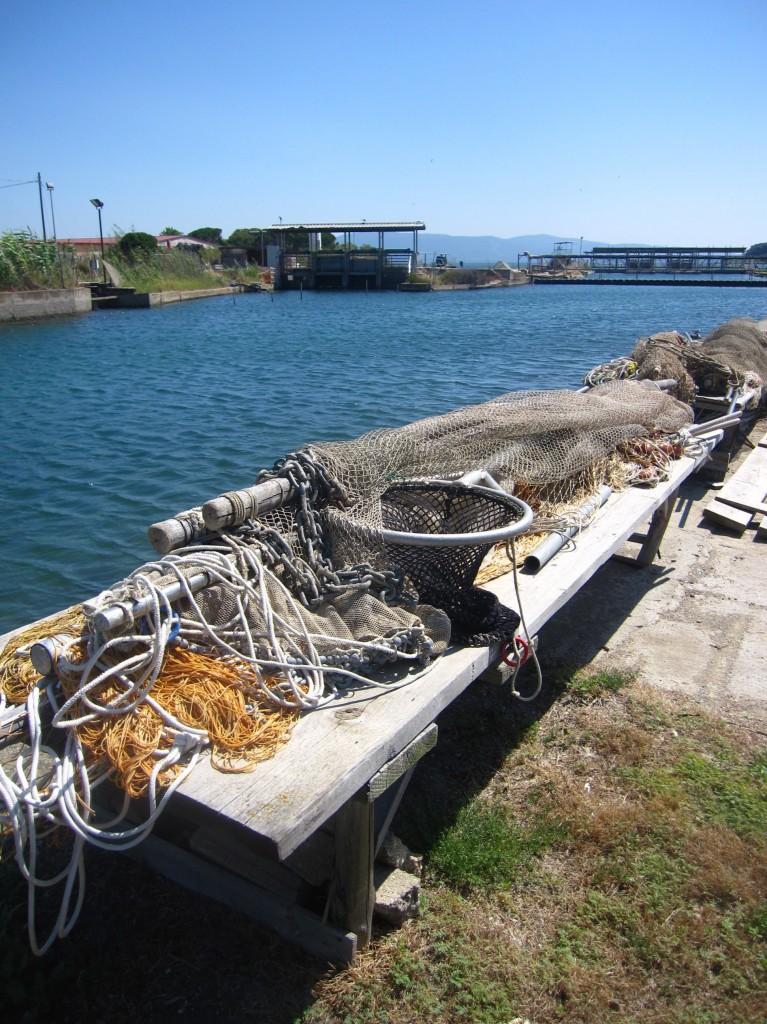 Il canale di collegamento fra mare e laguna