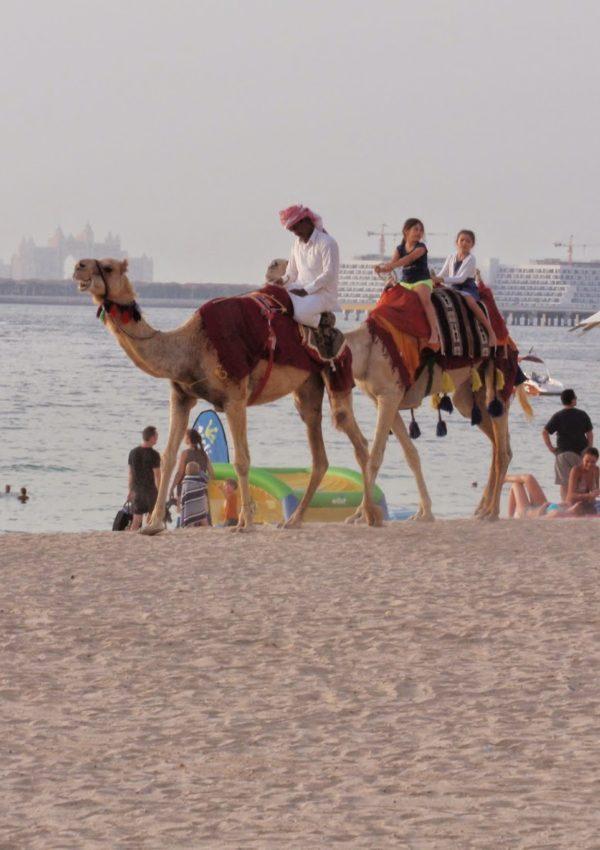 Dubai, una città tra lusso e modernità