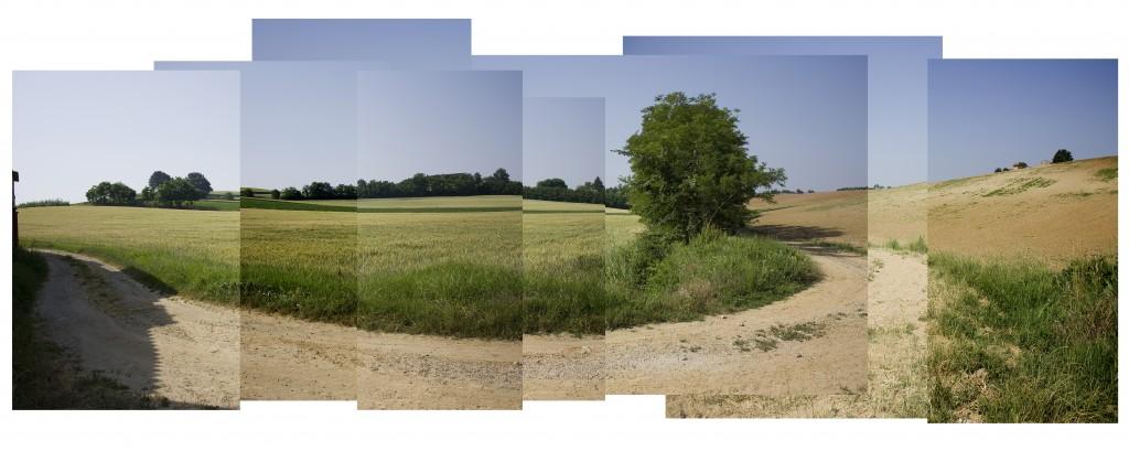 Una collina del Monferrato casalese
