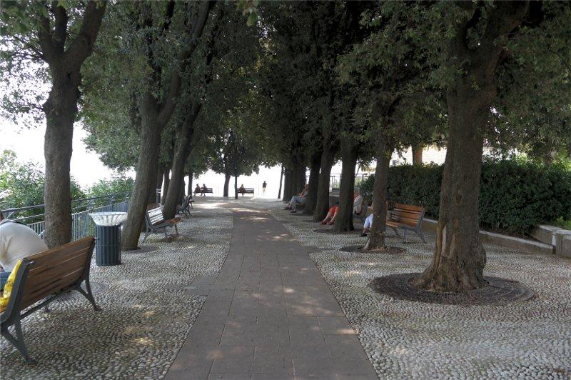 Sirolo centro piazza alberata
