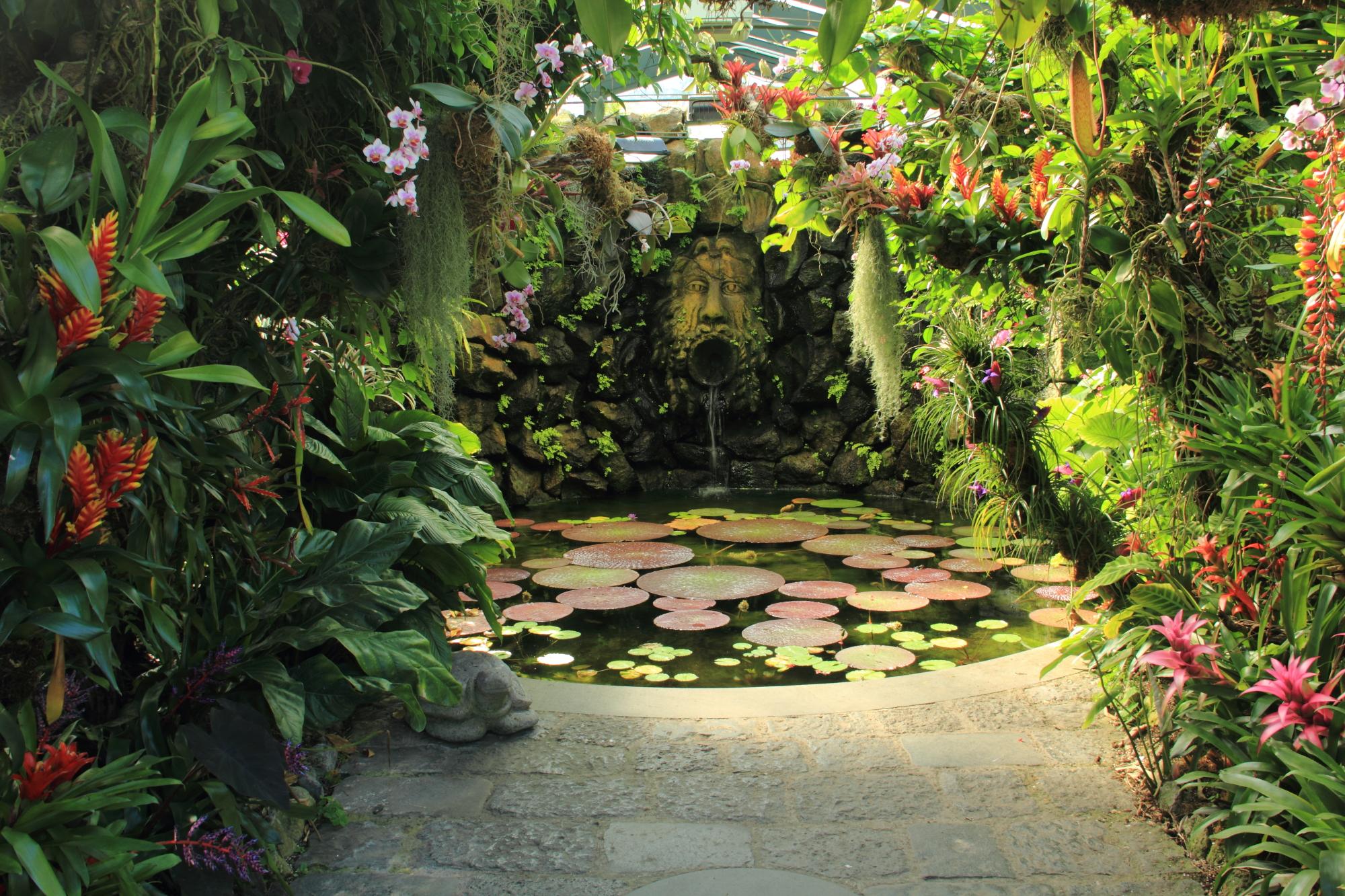 Giardini la mortella il paradiso segreto dell isola di ischia trippando - Giardino la mortella ...