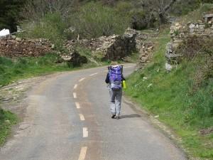 camminando lungo il cammino di santiago