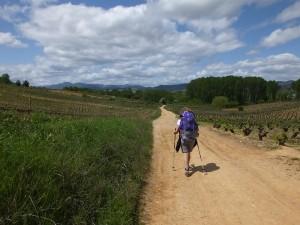 pellegrini lungo il cammino di santiago