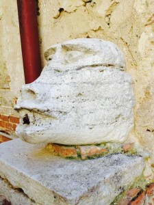 La testa di Scimmia del Chiostro Cennini