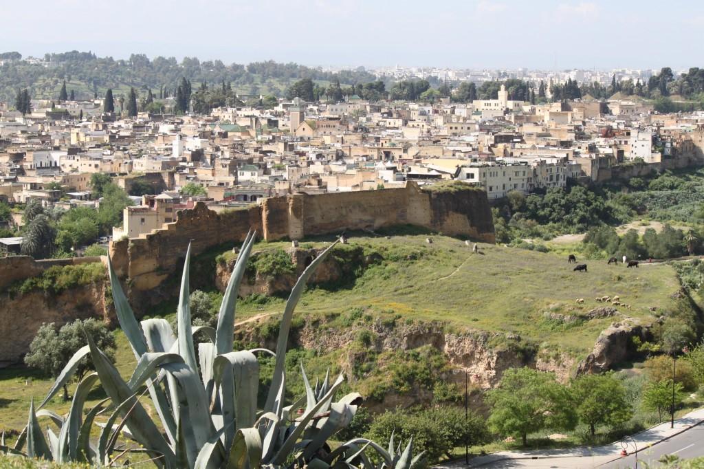 mura di fez e vista della città