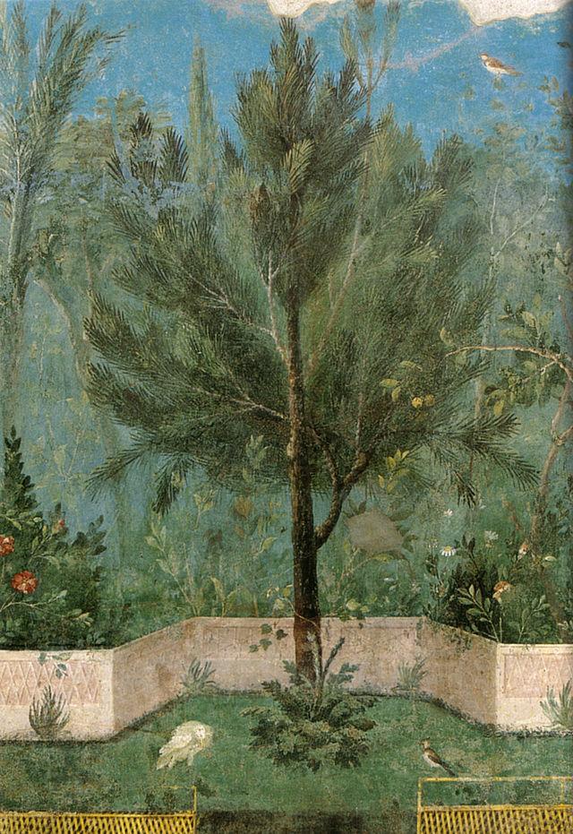Villa di Livia (I secolo d.C.) affrescata con immagini di giardino: pino