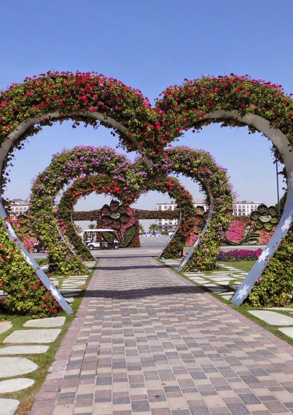 Dubai: una visita al Miracle Garden
