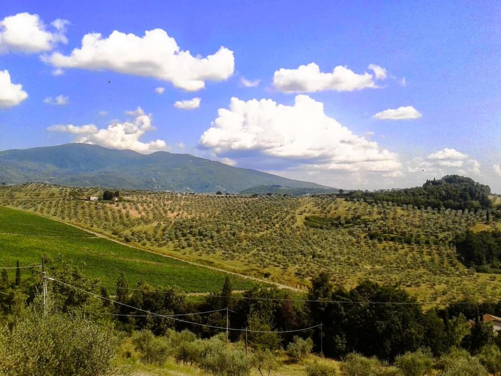 Picnic all'Abbazia di Vallombrosa in Valdisieve
