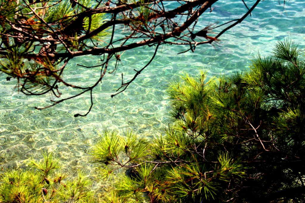 isola di brac: la trasparenza del mare