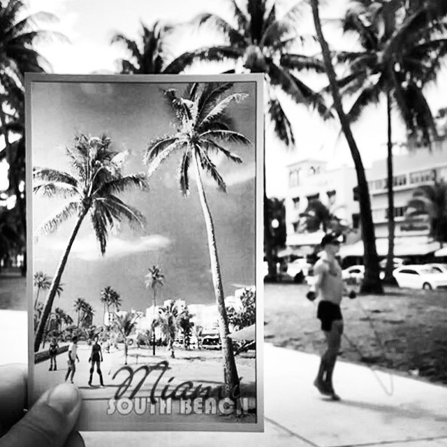 thepostcardsproject-miami