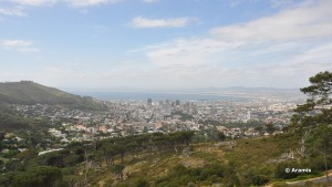 047 Cape Town - Table Mountain 03