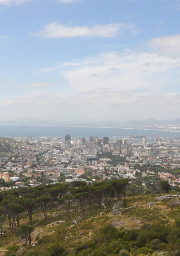Visitare Cape Town e Penisola del Capo: la mia Top Five