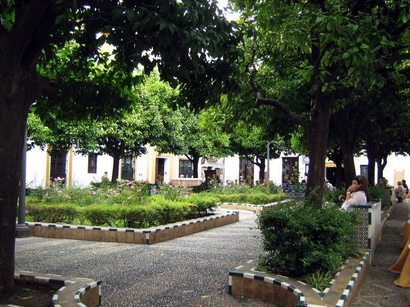 Plaza de Dona Elvira Siviglia barrio di santa cruz