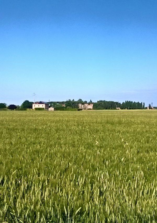 Igea Marina e la Romagna: che sorpresa!