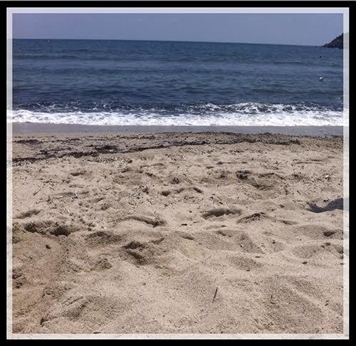 spiaggia elba