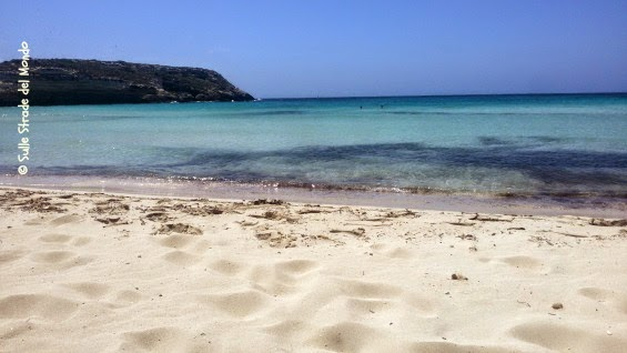 spiaggia_conigli