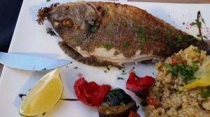 Cena con Orata fresca a La Terresses du Bassin