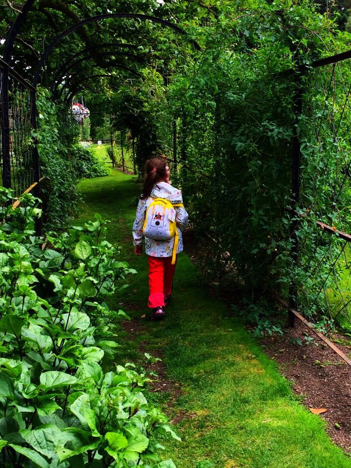 botanic garden dublino