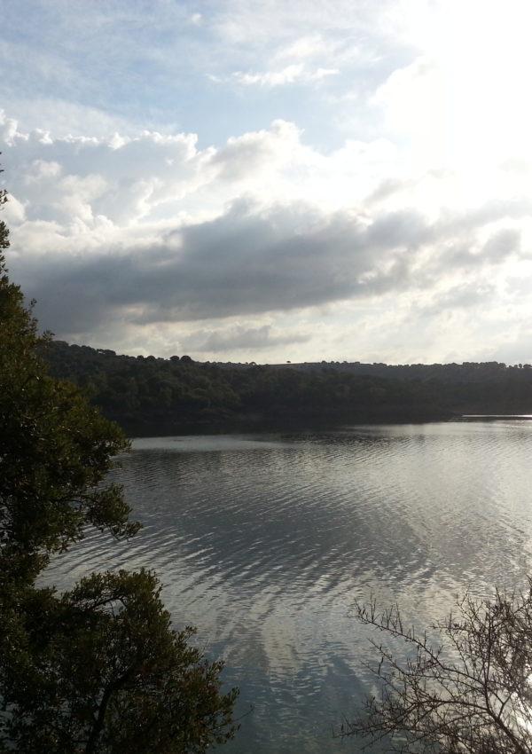 Trekking sulle rive del lago Coghinas