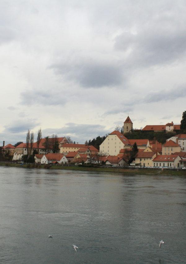 Le perle della Slovenia – Parte I: cosa vedere a Ptuj