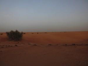 sabbia rossa deserto